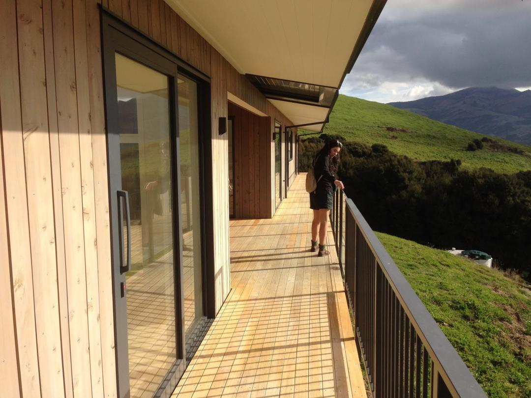 NZ Macrocarpa Cladding